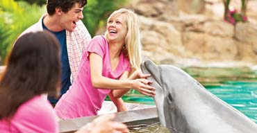 12 Essential SeaWorld San Diego Tips for Families
