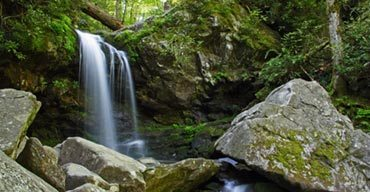 7 Easy Hikes in The Great Smoky Mountains