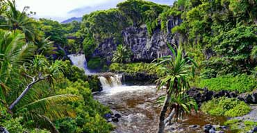 The Road to Hana Maui: Must-See Sights & Stops