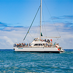 Kauai Sea Tours - Whale Watch Catamaran Cocktail Cruise  in Eleele HI