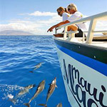 "Maui Magic ""Dolphin Discovery"" Snorkel Adventure in Maalaea, Maui HI"