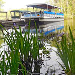 Nature and Wildlife River Boat Tour in Myrtle Beach SC