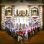 Christmas at Dixie Stampede Dinner & Show in Branson MO
