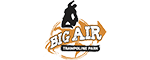 Big Air Buena Park  Logo