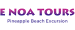 Pineapple Beach Excursion Logo