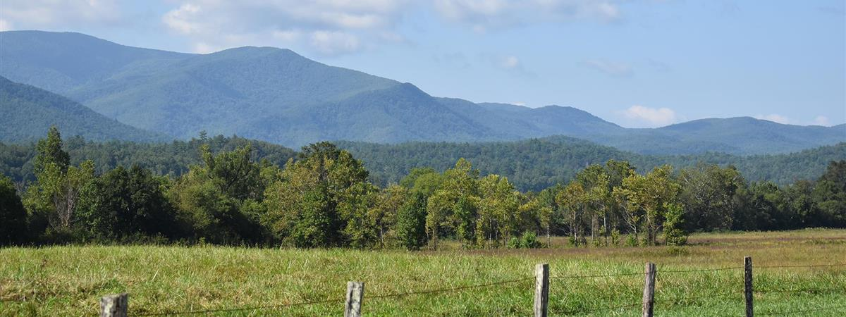 Cades Cove Bus Tour