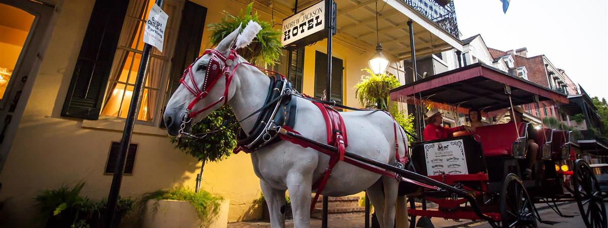 French Quarter Carriage Tours in New Orleans, Louisiana