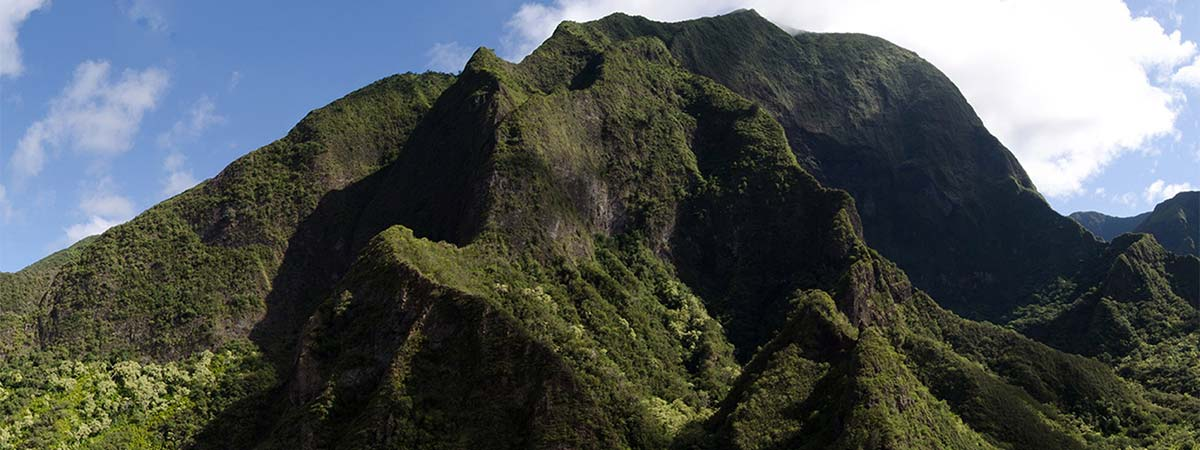 Haleakala, Central Maui and Iao Valley Tour