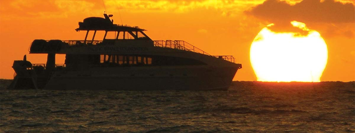 Lahaina Sunset Dinner Cruise Maui Pacific Whale