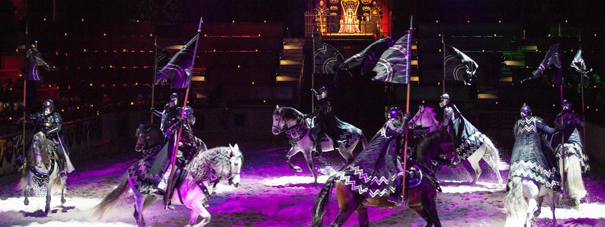 Medieval Times Dinner and Tournament- Baltimore
