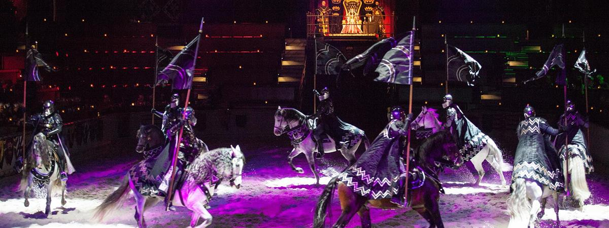 Medieval Times Dinner and Tournament Illinois