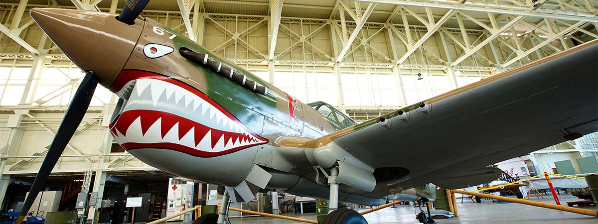 Pacific Aviation Museum and USS Arizona Tour