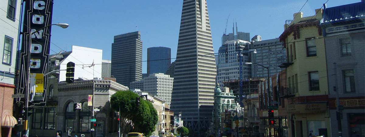 Super Saver by Day Tour - City Tour & Redwoods Visit in San Fransisco, California