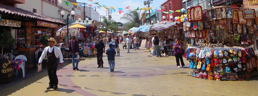 Tijuana Shopping Adventure from Anaheim
