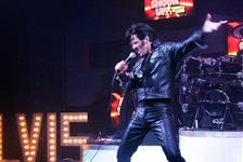 All Shook Up, Tribute to the King in Las Vgeas, Nevada