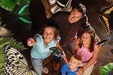 Butterfly Palace & Rainforest Adventure in Branson MO