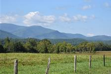 Cades Cove Bus Tour in Pigeon Forge TN