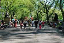 Central Park Walking Tours in New York NY
