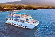 Dolphin & Snorkeling Cruise on the Body Glove in Kailua Kona, Big Island HI
