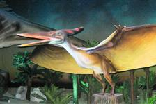 Dinosaurs - The Exhibition in Myrtle Beach, South Carolina