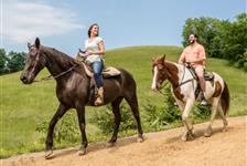 Five Oaks Riding Stables in Sevierville, Tennessee