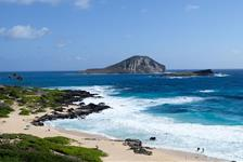 Hidden Gems of Oahu Tour plus North Shore Turtle Snorkeling in Honolulu HI