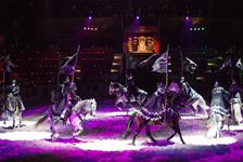 Medieval Times Dinner and Tournament Illinois in Schaumburg IL