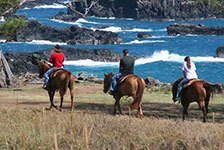 Mendes Ranch and Trail Rides - Maui in Wailuku, Maui HI