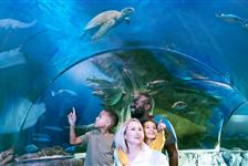 SEA LIFE Charlotte-Concord in Concord, North Carolina