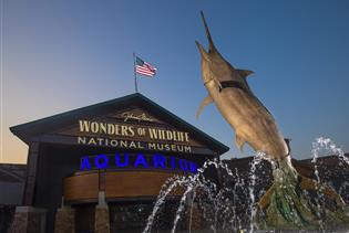 Johnny Morris' Wonders of Wildlife National Museum & Aquarium in Springfield MO
