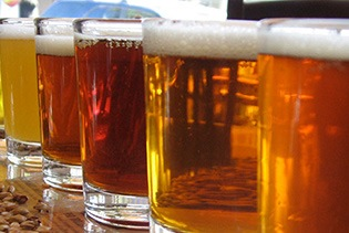 San Diego Craft Brewery Tours in San Diego CA