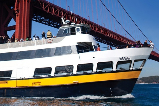 San Francisco Bay Cruise Adventure in San Francisco CA