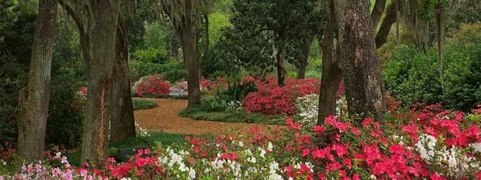 Bok Tower Gardens in Lake Wales FL