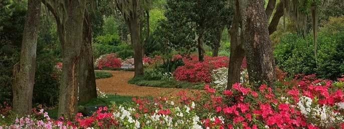 Bok Tower Gardens