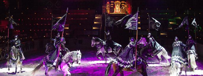 Medieval Times Dinner and Tournament California