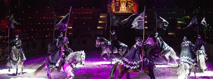 Medieval Times Dinner and Tournament Illinois in Schaumburg, Illinois