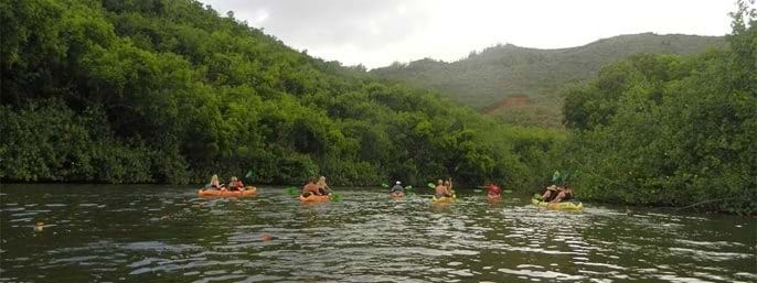 Rainbow Kayak Tours of Wailua River - Kauai in Kapaa, Kauai HI
