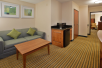Living Area - Holiday Inn Express Hotel & Suites in Fredericksburg, VA