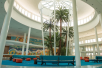 Lobby - Universal's Cabana Bay Beach Resort in Orlando, FL