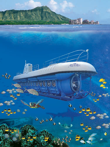 Submarine Tour Maui Review