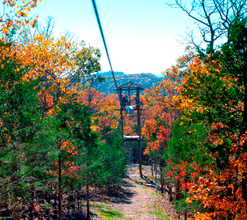 Fall is a beautiful time to zip with us