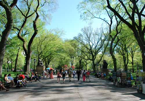Central Park Tours in New York, New York