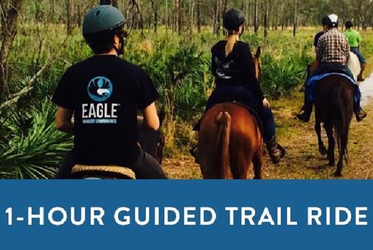 Guided Horseback Trail Ride