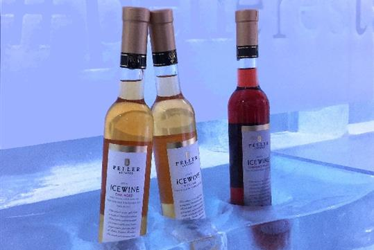 Icewine Tours with New World Wine Tours in Toronto, ON