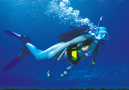 Scuba Diving- No Experience Necessary in Honolulu, Hawaii