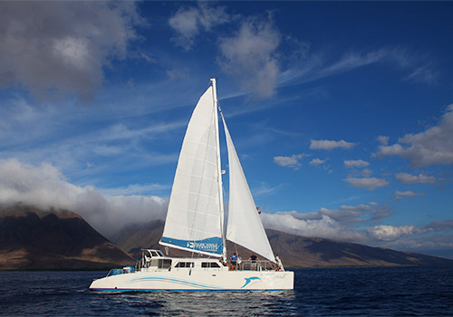 Ocean Spirit Sail Boat - Whalewatch Sail Deluxe  in Lahaina, Hawaii