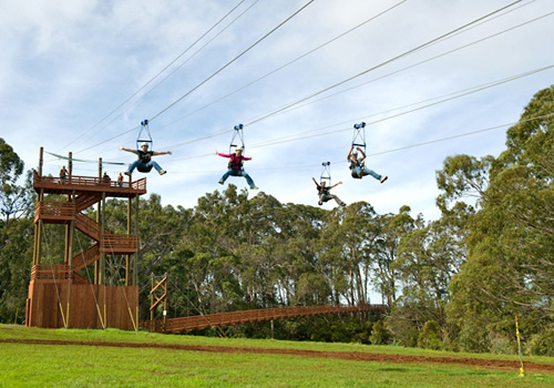 Zipline Tours in Makawao, Maui, Hawaii
