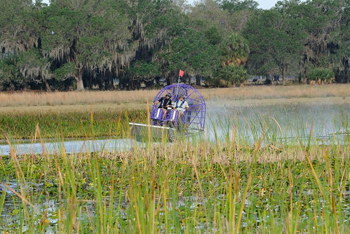 Airboat Tours Kissimmee Fl