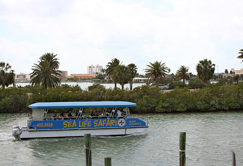 Clearwater Beach And Boat Tours Orlando Fl