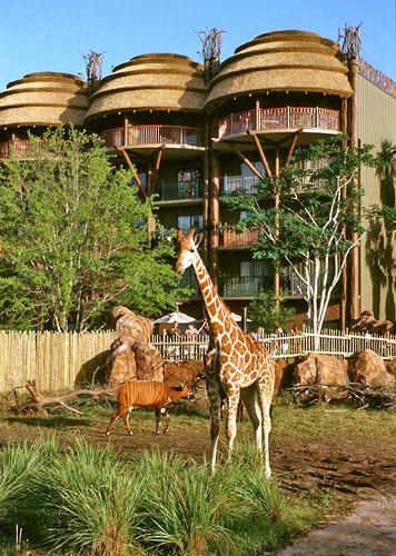Disney S Animal Kingdom Lodge Walt Disney World Resort
